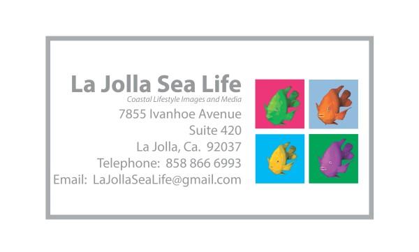 ljsl business card white